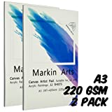 Markin Arts Sketch Book 149lbs/220gsm A3 Professional Heavy-Weight Textured Acid-Free Neutral PH Watercolor Oil Pencil Ink Painting Coloring Drawing Crafting Paper Artist Canvas Pad 12 Sheets 2-Pack (Color: White, Tamaño: A3)