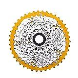 Mountain Adaptateur Cassette arrière pour vélo 40 Or - Best Reviews Guide