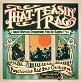 That Teasin' Rag: Vintage American Arrangements From The Ragtime Era