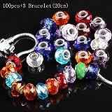 AlphaAcc 100Pcs Silver Lampwork Murano Glass Beads to Fit Pandora Style Charm Bracelets (100+3)