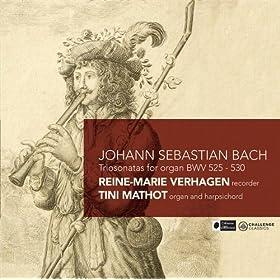 Sonata VI, BWV 530: I. Vivace