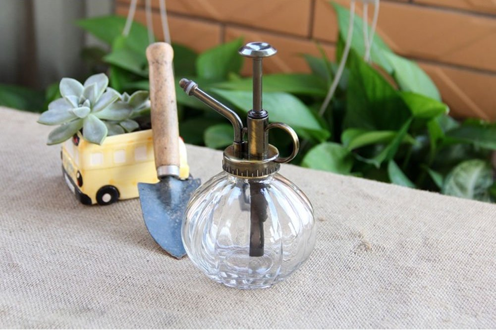Lchen Ribbed Plant Mister Vintage Style Decorative Glass Bottle with Top Pump (Clear)