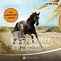 Ostwind: Auf der Suche nach Morgen (Ostwind 4) Audiobook by Lea Schmidbauer Narrated by Anja Stadlober