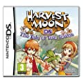 Harvest Moon: The Tale Of Two Towns (Nintendo DS)