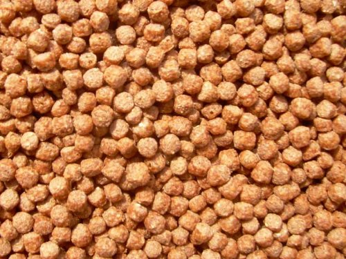 Koi Color Pellets mit Astaxanthin 2mm 500ml