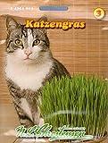 Chrestensen 'Katzengras' Saatmischung