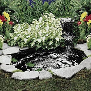 Backyard ponds create magic in your backyard with a fish for Garden pond amazon