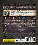 Image de Il signore degli anelli 1 - La compagnia dell'anello [Blu-ray] [Import italien]