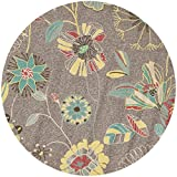 Safavieh Four Seasons Collection FRS482A Hand-Hooked Grey and Blue Indoor/ Outdoor Round Area Rug, 6 feet in Diameter (6' Diameter)