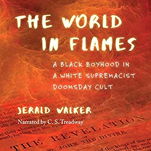 The World in Flames Audiobook