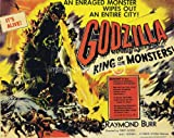 Godzilla King of the Monsters 1956 Vintage Movie Poster Art 18x24