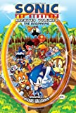 img - for Sonic The Hedgehog Archives, Vol. 0: The Beginning book / textbook / text book