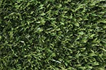 Big Sale Best Cheap Deals Premium Synthetic Turf. Size 6' X 10', 46oz. Rubber Backed with Drainage Holes.