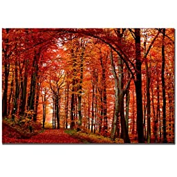 Trademark Fine Art The Red Way by Philippe Sainte-Laudy Canvas Wall Art, 22x32-Inch