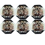 Super Drool Shell Coasters
