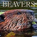 Beavers 2015 Square 12X12