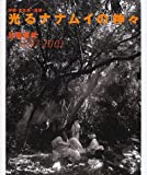 光るナナムイの神々―沖縄・宮古島~西原~ 1997~2001 (チルチンびとライブラリー)