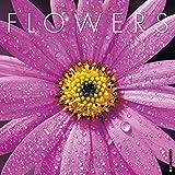 Flowers 2017 Wall Calendar