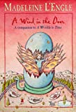 cover of A Wind in the Door