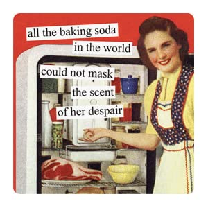 Magnet that says All the baking soda in the world could not mask the scent of her dispair