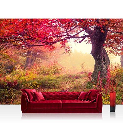 vlies fototapete 400x280 cm top premium plus foto. Black Bedroom Furniture Sets. Home Design Ideas