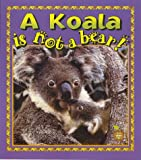 A Koala Is Not a Bear! (Crabapples)