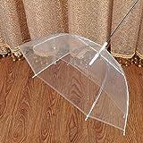H.YOUNG Transparent Pet Umbrella Leash For Raining - Dog Gift
