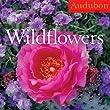 Audubon Wildflowers Calendar 2010
