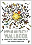 Christopher Lloyd The What on Earth? Wallbook of Big History: A Timeline from the Big Bang to the Present Day