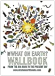 The What on Earth? Wallbook of Big Hi...
