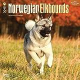 Norwegian Elkhounds 2015 Square 12x12 (Multilingual Edition)