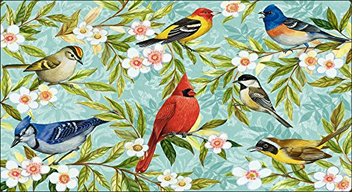 Toland Home Garden Bird Collage 20 x 38-Inch Decorative USA-Produced Anti-Fatigue Standing Desk Comfort Designer Mat