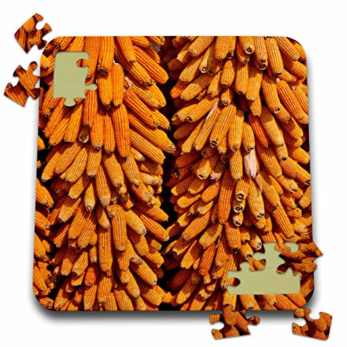 Danita Delimont - Food - Harvested corn hanging to cure near Tangjiawan, Kunming area of China - 10x10 Inch Puzzle (pzl_225501_2) (Chinese Food Corn compare prices)