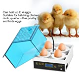 Eggs Incubator, 4 Eggs Incubator Temperature Control Digital Automatic Poultry Hatcher for Chickens Duck
