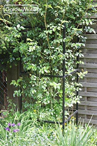 gardenmate rankhilfe ranks ule rankger st erweiterbar 1 modul 50x50x50cm. Black Bedroom Furniture Sets. Home Design Ideas