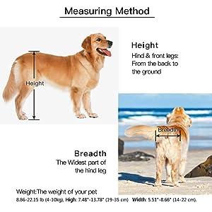 BEETLA Adjustable Pet Wheelchair for Small Dog Cat/Doggie/Puppy Walk, 2 Wheels Cart Pet Wheelchair for Handicapped Hind Legs (XS-1:Height: 7.48-13.78, Hip Width: 5.51-8.66) (Tamaño: XS-1:Height: 7.48-13.78 , Hip width: 5.51-8.66)
