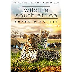 Wildlife South Africa - 3 DVD Pack