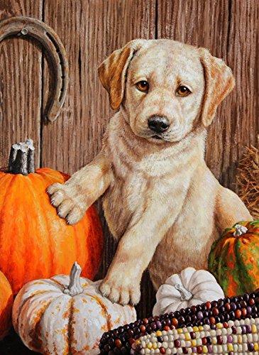 Pumpkin Harvest Puppy Autumn Garden Flag Yellow Labrador Fall Scene 12.5
