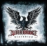 Blackbird (UK-OZ-NZ Version)