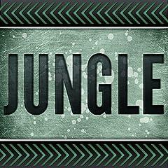 Jungle (Originally Performed by Jamie N Commons and X Ambassadors) [Karaoke Version]