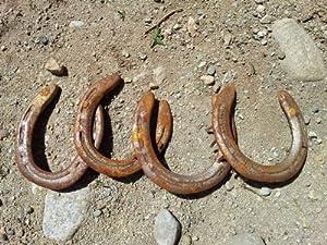 Used Horseshoes
