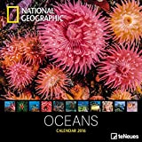 National Geographic Calendar Oceans 2016 Broschürenkalender