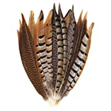 Outuxed 15 pcs Natural Pheasant Feathers for Crafts DIY Feather Tails in 3 Styles 25-30cm (Color: 12 colors pheasant feathers)