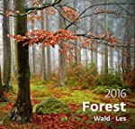 Forest Wall Calendar 2016 - Tree Cale...