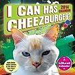 I Can Has Cheezburger? 2014 Box