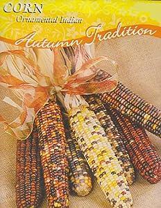 Ornamental Indian Corn Seeds - 8 grams