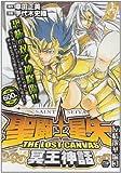 聖闘士星矢THE LOST CANVAS冥王神話 友情散華編3 (秋田トップコミックスW)