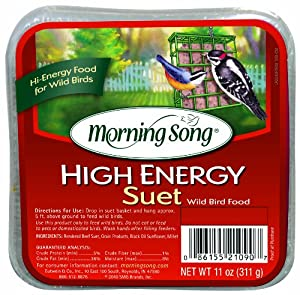 Morning Song High Energy Suet Wild Bird Food, 11-Ounce