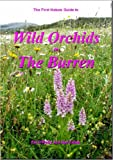 Wild Orchids in the Burren Pat O'Reilly