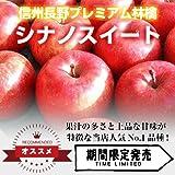 【信州長野県産 プレミアム りんご 】シナノスイート 秀品大玉 14~16玉 5kg箱